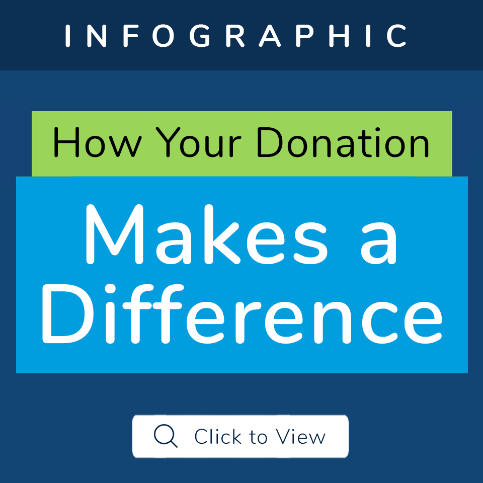 infographic donation